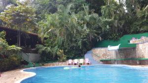 Hotel Pool in der Jungle Villa