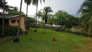 Montezuma - Der Strand direkt vor der Haustür